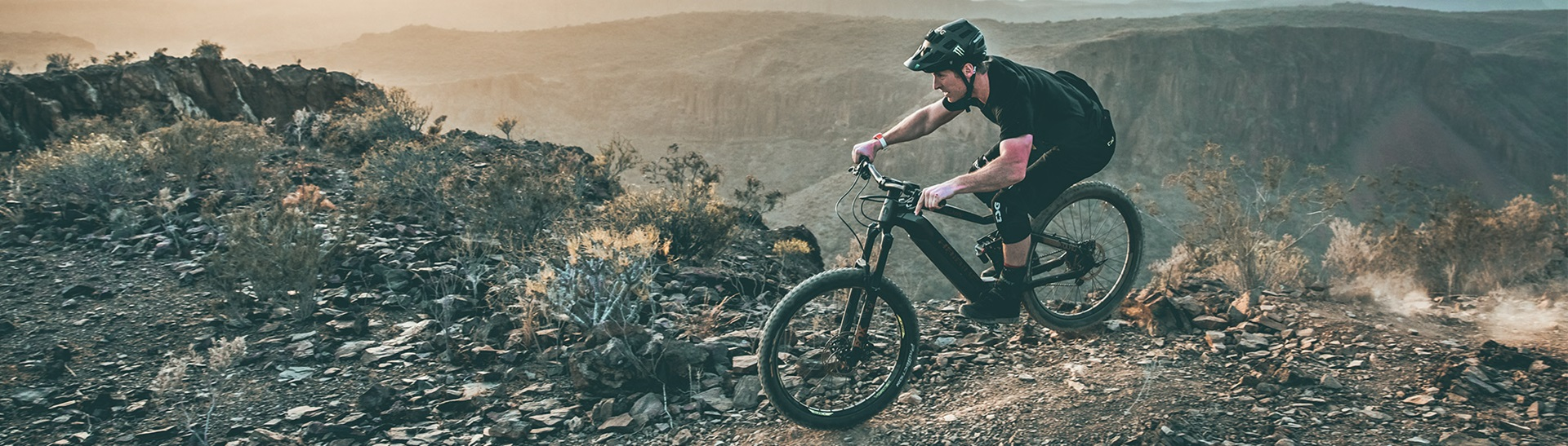 Electric All-Mountain Bikes