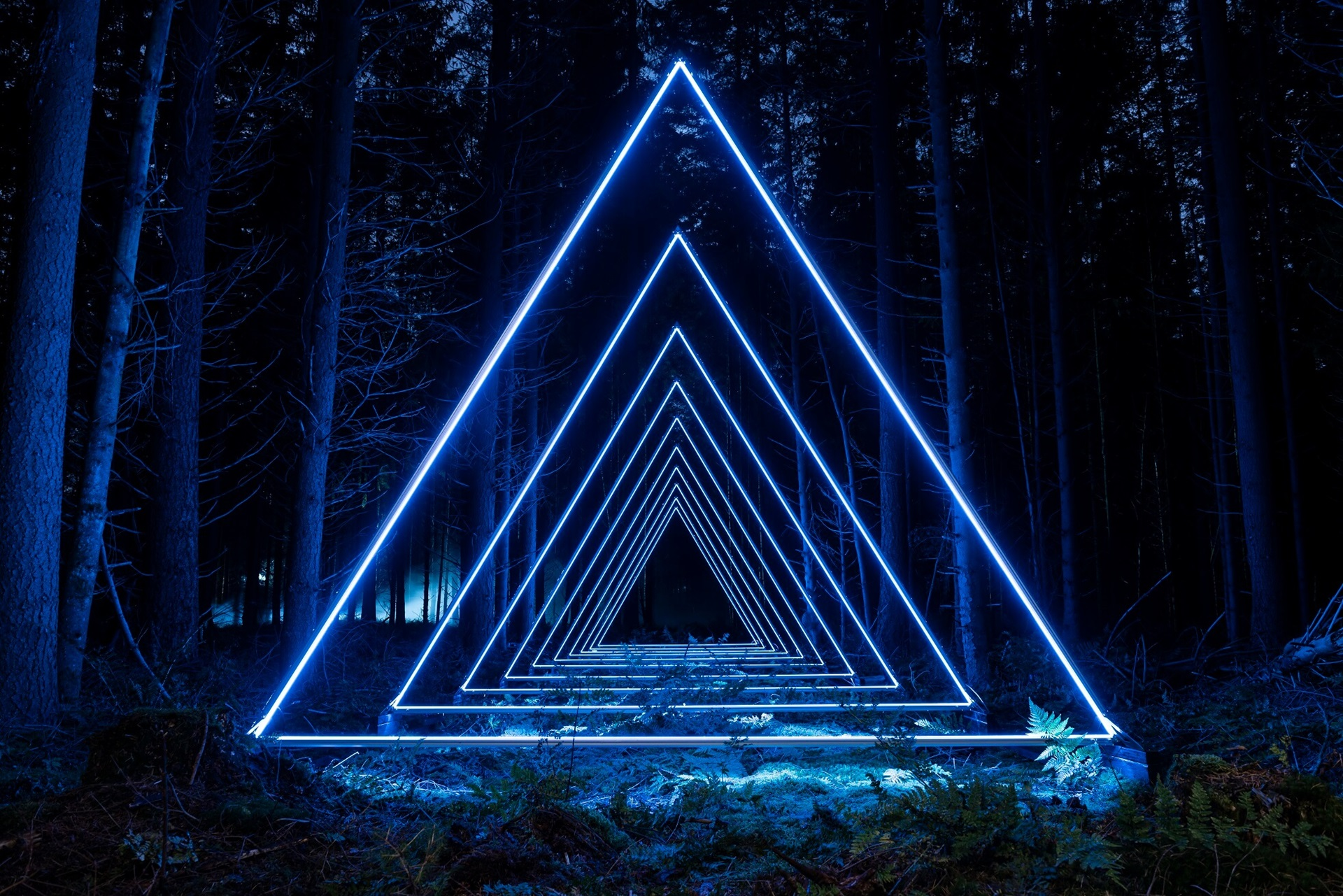 Blue, triangular and brightly lit lights in a dark forest
