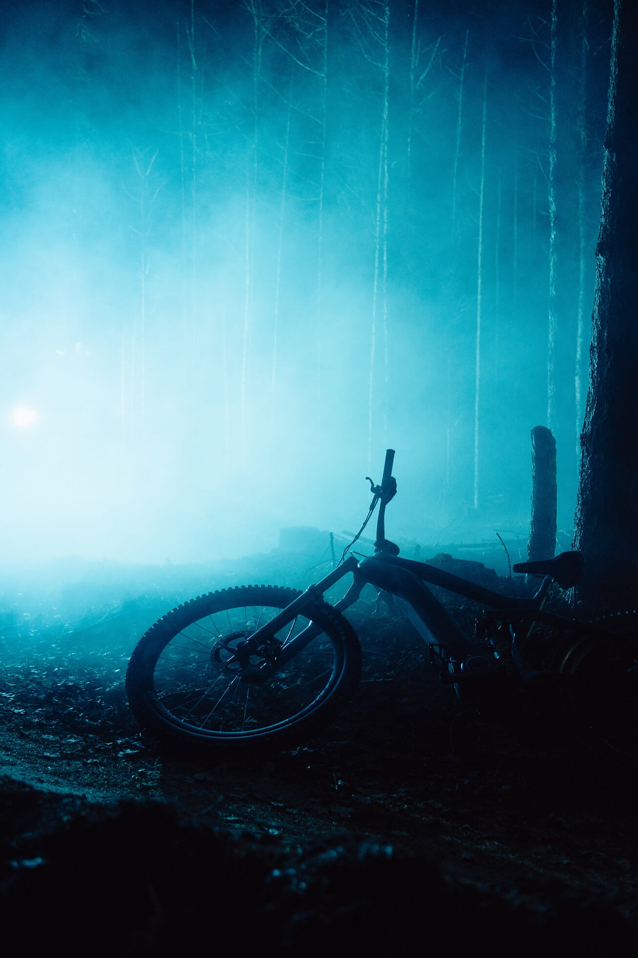 Mountain bike laying in a dark, slightly foggy forest with blue light in the background